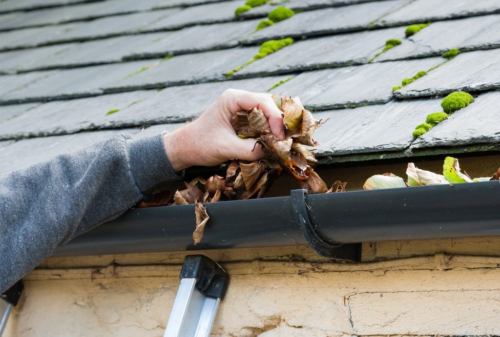 Roofing Spring Maintenance Tips